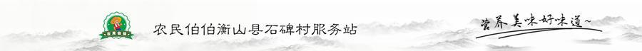 农民伯伯衡山县石碑村服务站