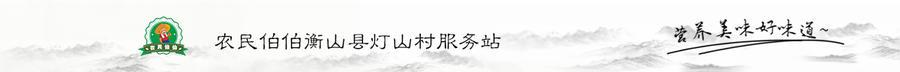 农民伯伯衡山县灯山村服务站