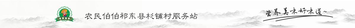 农民伯伯祁东县杉铺村服务站